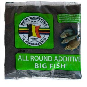 BIG_FISH