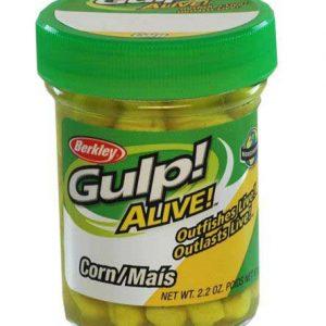 GULP_ALIVE_CORN